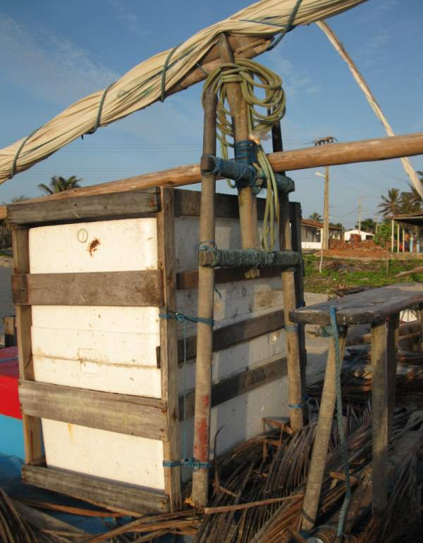 A jangada's espeque with mast boom and icebox.