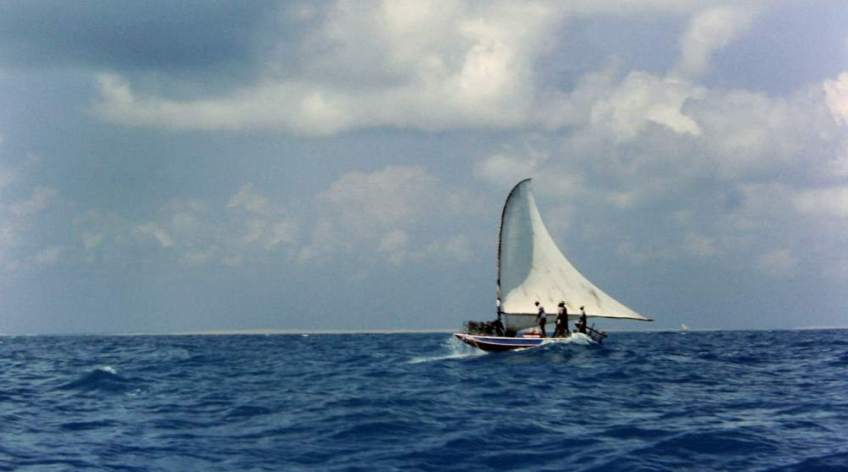 A larger jangada (jangada do Alto) sailing off to set lobster pots.