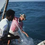 Two jangadeiros pulling in a fishing net.