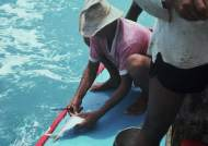A jangadeiro at the rail cleaning a fish.
