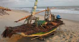 A beached jangada with its deck covered with palm fronds to protect against the sun.
