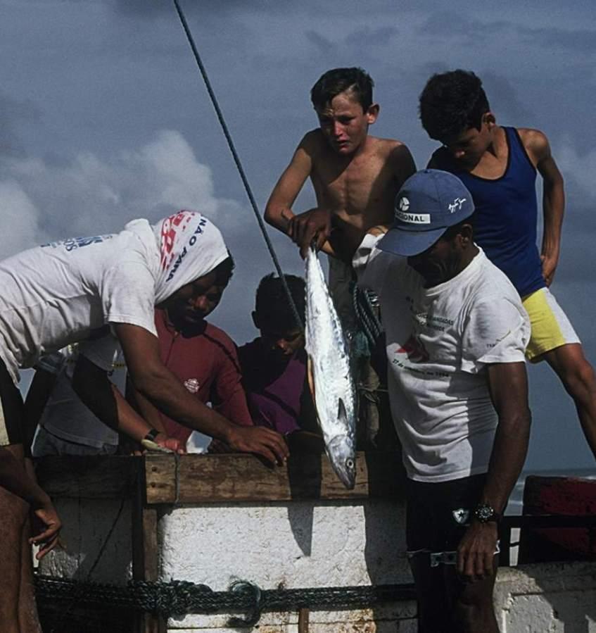 Jangadeiros removing fish from the icebox.